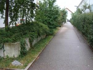 Gartenumgestaltung vorher