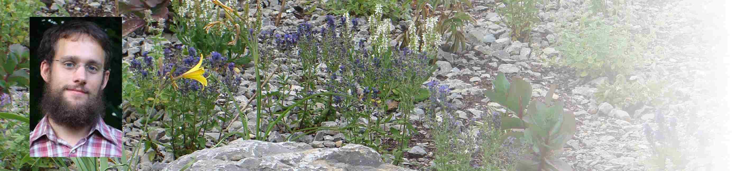 — Garten-Schaffen — Ein Blog über den Garten